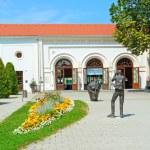 Romertherme thermal baths in Baden bei Wien, Austria. — Stock Photo #35975833