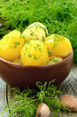 Boiled potatoes with dill — Stock Photo
