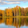 Stock Photo: Autumn trees on lake