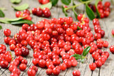 Cowberries on table — Stock Photo