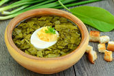 Sorrel soup with egg — Stock Photo