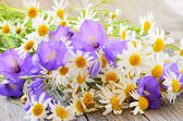 Campanula and chamomile flowers on table — Stock Photo