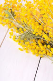 Mimosa flowers on wooden table — Stock Photo