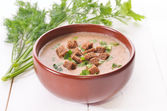 Bread soup with croutons and herbs — Stock Photo