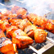 Juicy meat shish kebab on coals. — Stock Photo