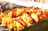 Juicy meat shish kebab on coals. — Stock Photo