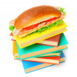 Sandwich on books. On a white background. — Foto Stock