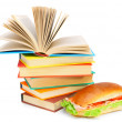 Sandwich, and books on a white background. — Stock Photo