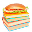 Sandwich on books. On a white background. — Stock Photo
