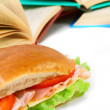 Sandwich and books on the white. — Stock Photo