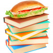 Sandwich on multi-coloured books. On a white background. — Stock Photo