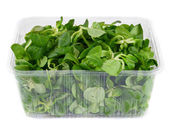 Greens in the container. — Stock Photo