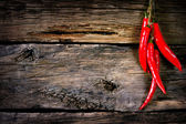Red pepper on a cord. — Stock Photo