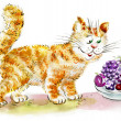 Stock Photo: Cute hungry Ginger Cat looking at fruits