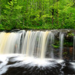 Waterfall in Woods — Stock Photo #29329723