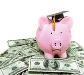 Piggy bank with graduation cap — Stock Photo