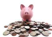 Piggy bank on coins — Stock Photo