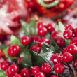 Holly Beeren Weihnachtsdekoration — Stockfoto