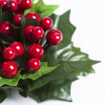 红色浆果的圣诞花环 — 图库照片 #14680959