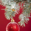 Christmas tree decoration — Stock Photo #16792305