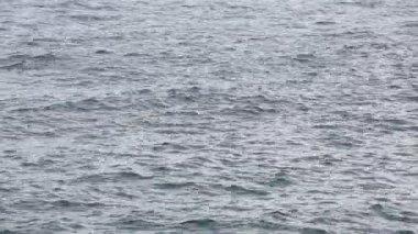 Blåsiga havet ytbehandlar — Stockvideo