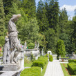Stock Photo: Peles castle garden