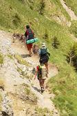 Hikers in Bucegi Mountains — Stock Photo