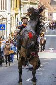 Stallion rearing with rider in Brasov, Romania — Stock Photo