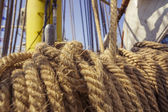 Aged marine ropes — Stock Photo