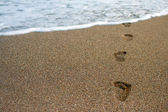 Footprints in a sand — Stock Photo