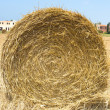 Hay Roll in the city - Stock Photo