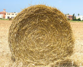Hay Roll in the city — Stock Photo