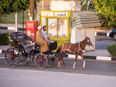 A Caleche, horse and cart in Luxor Egypt — Stock Photo