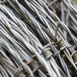 Galvanized Barbed Wire Roll — Stock Photo