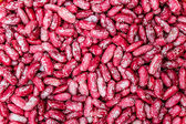 Red Beans — Stock Photo
