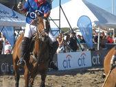 Beach polo horse 2013 — Stock Photo