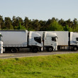 White trucks on a parking area — Stock Photo #14096031