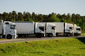 White trucks on a parking area — Stock Photo