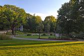 Summer park — Stock Photo