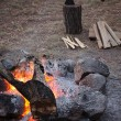 Wooden camp fire — Stock Photo #14020426