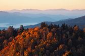 Nascer do sol nas montanhas smoky — Foto Stock