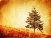 Styl vintage zdjęcie samotne drzewo — Zdjęcie stockowe
