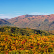 Fall colors woods in the Smoky Mountains National Park — Stock Photo #14810543