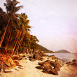 Vintage style image of tropical beach — Stock Photo #15041463