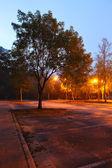 清晨的公园 — 图库照片