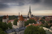Panoramic view of Tallinn old city center — Stock fotografie