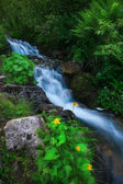 Mountain waterfall — Photo