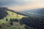 Carpathian mountains rural landscape — Stock Photo