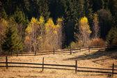 Autumn mountain hills — Stock Photo