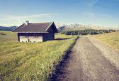 Zdjęcie w stylu retro zielony latem pola uprawne — Zdjęcie stockowe